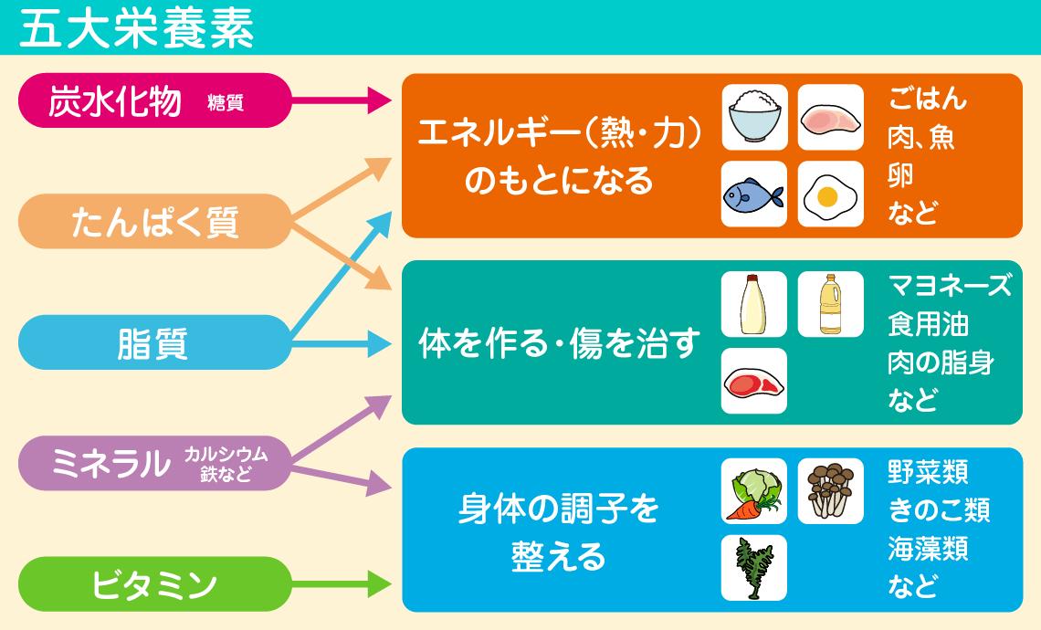 栄養 マヨネーズ