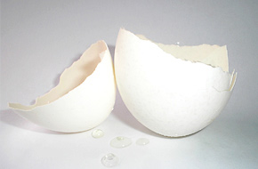 About Eggshell Membrane