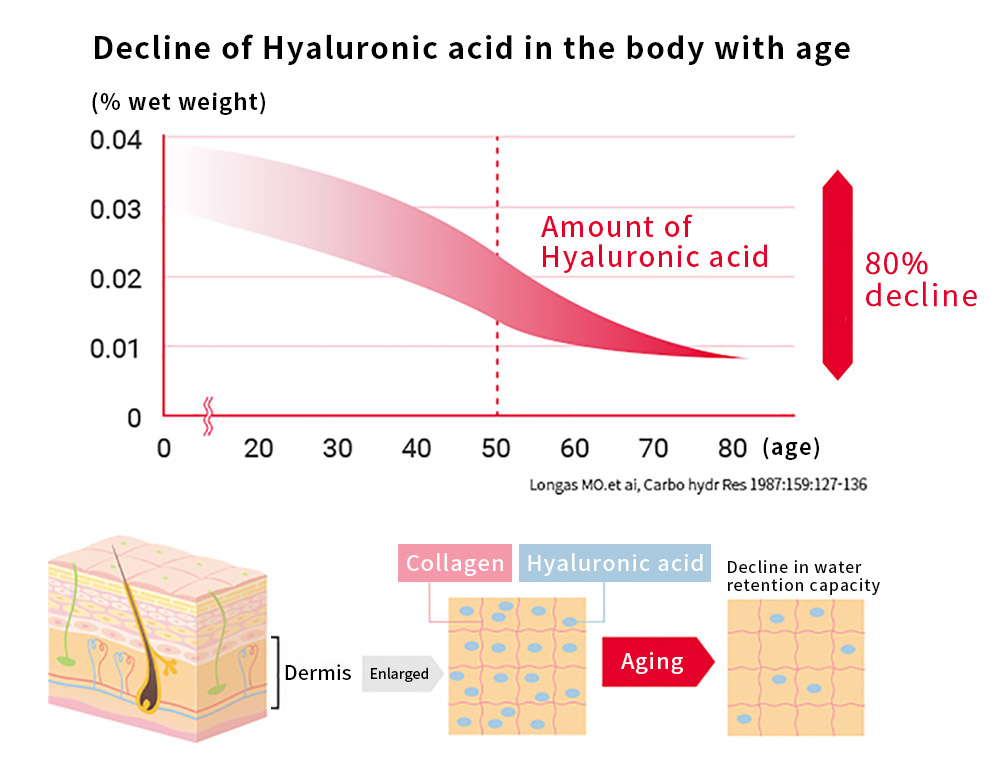 Age-related changes in amounts of Hyaluronic acid